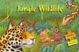 Børnebogsillustrationer - Cover - Jungle Wildlife